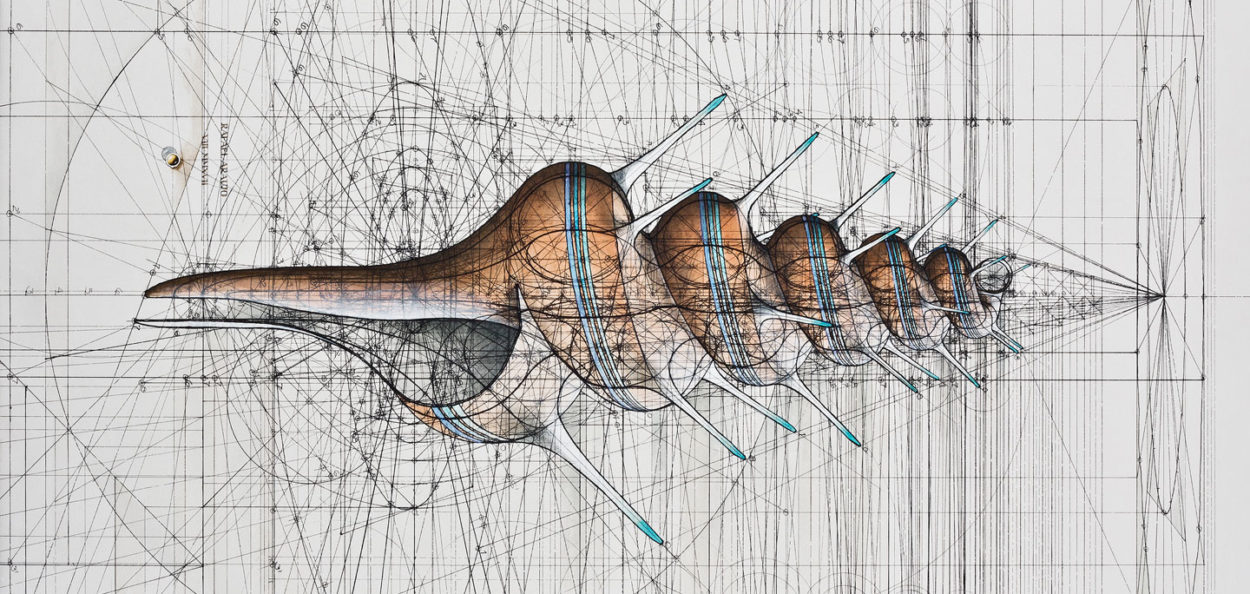 Rafael Araujo on mathematical illustrations of nature