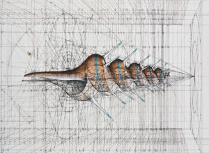 Rafael Araujo on mathematical illustrations of nature
