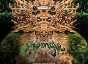 Shpongle – Codex VI