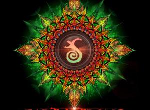 Ingrained Instincts & Daksinamurti – Hippie Hill