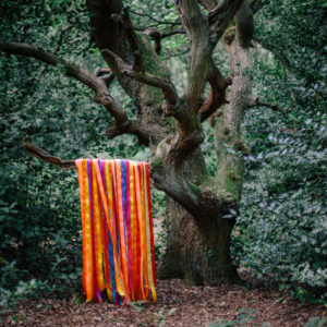 James Holden & The Animal Spirits – Go Gladly Into The Earth