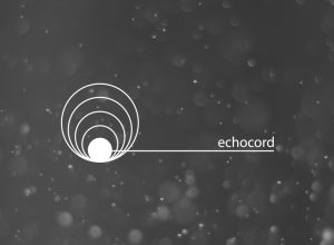 Label Showcase: Echocord