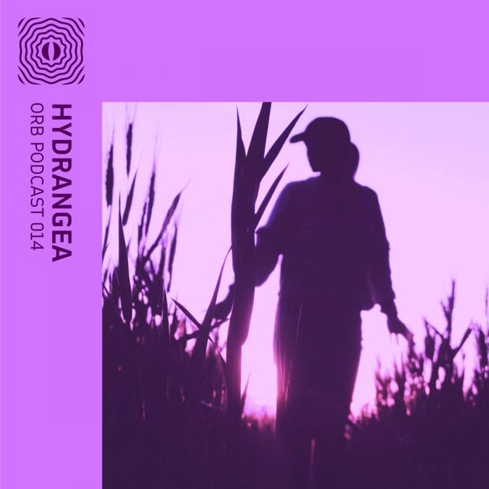 Orb Podcast 014: Hydrangea
