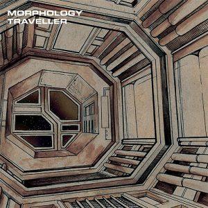 Morphology – Pod Bay 8
