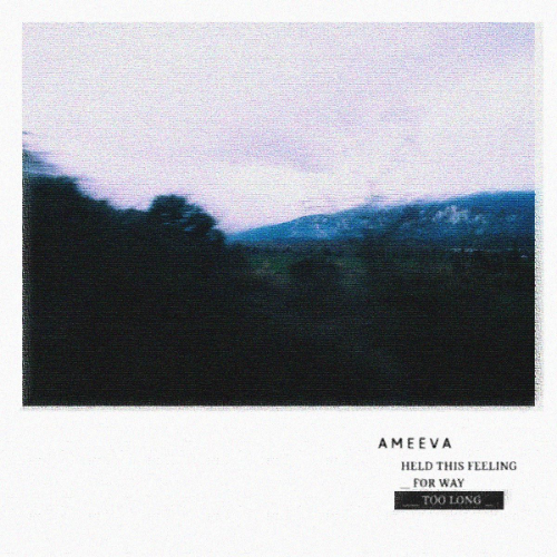 Ameeva – Held This Feeling For Way Too Long