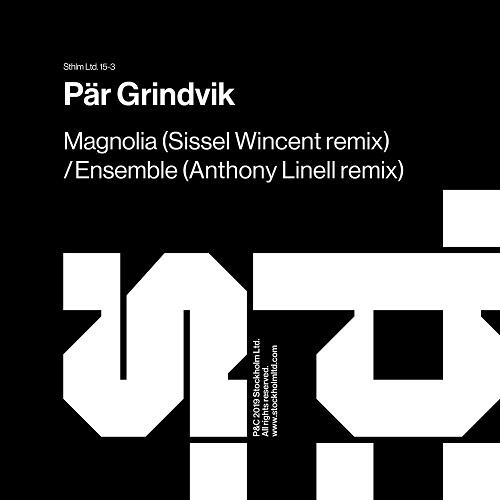Pär Grindvik – Ensemble (Anthony Linell Remix)