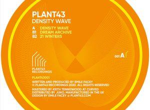 Plant43 – 21 Winters