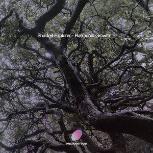 Shaded Explorer – Collective Intelligence