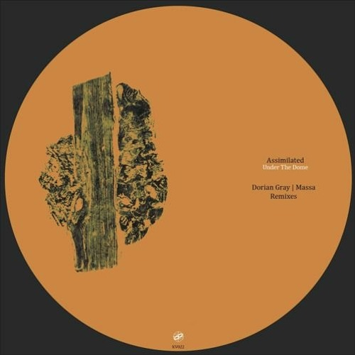 Assimilated – Sequence Of Occurrences (Dorian Gray Remix)