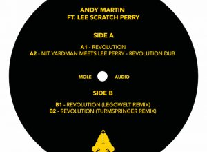 Andy Martin feat. Lee Scratch Perry – Revolution (Legowelt Remix)